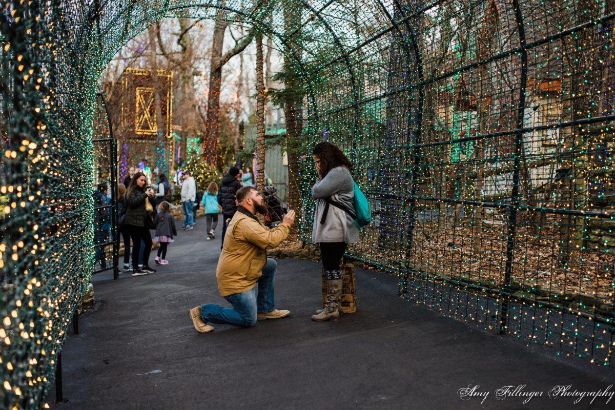 NWA engagement photographer