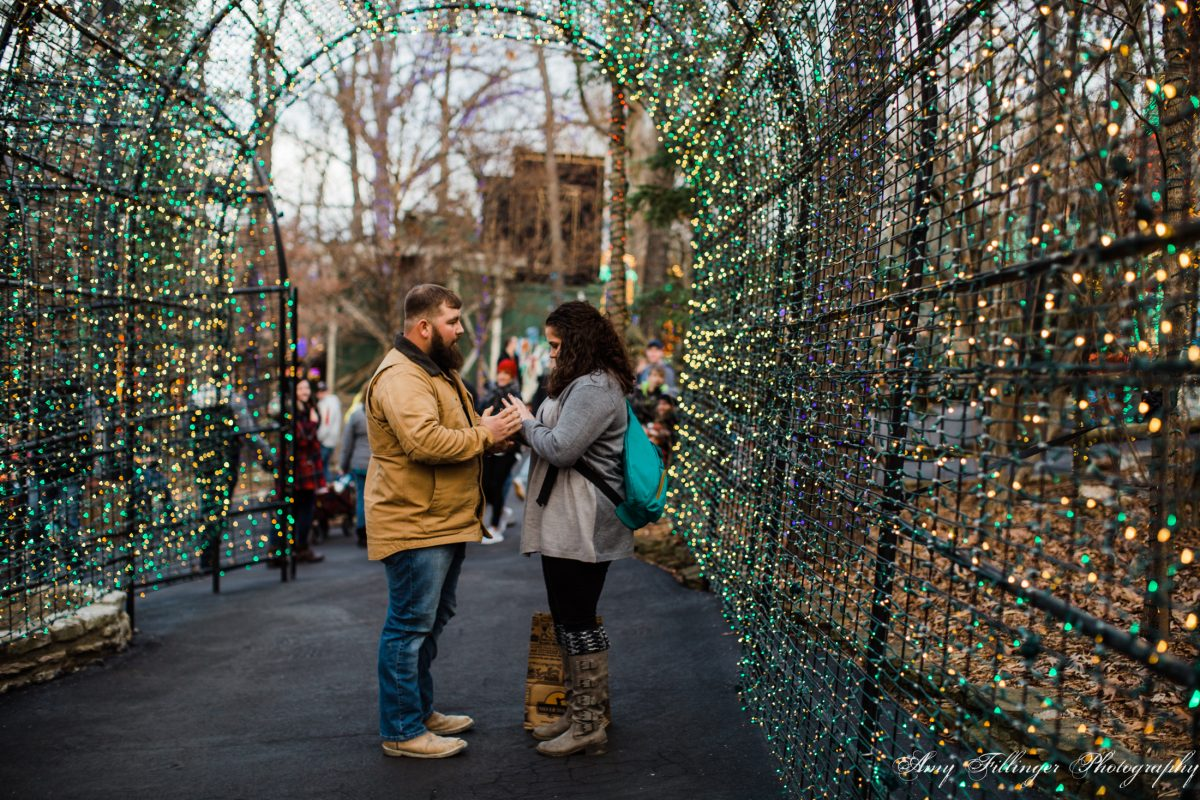 Silver Dollar City proposal