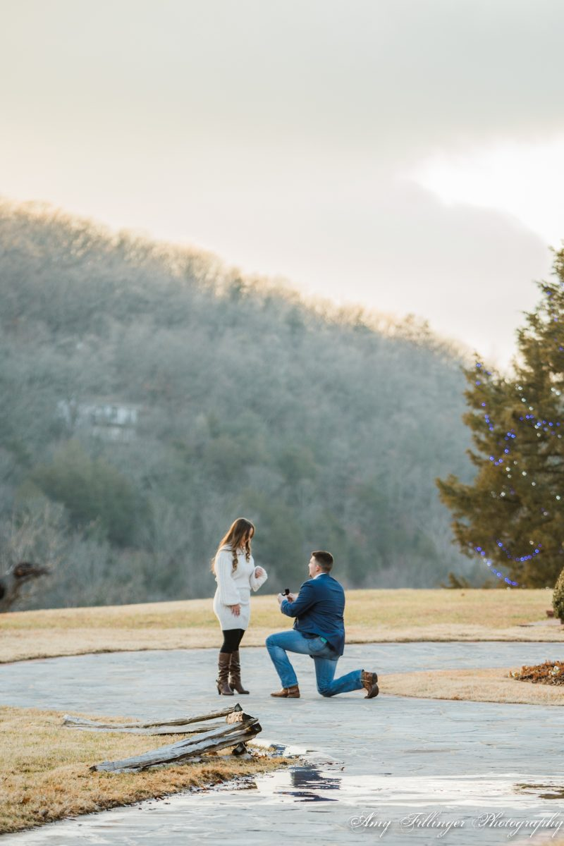 NWA Proposal Photographer | Big Cedar Lodge Proposal